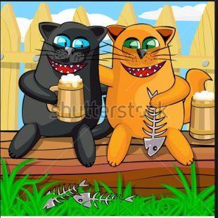 catd5