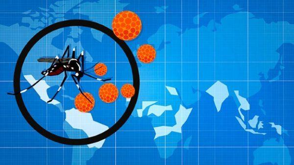 10-Essential-Facts-About-Zika-Virus-alt-722x406