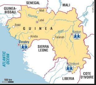 guinea2