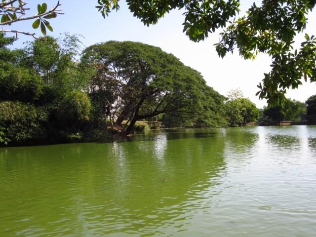 1စိမန္းလန္းေအးခ်မး္ေသာေရကန္ေလး