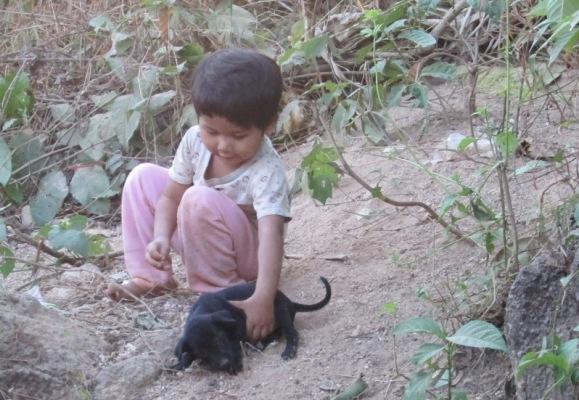 ပံု(၁၉) သဘာ၀က်က် ျမင္ကြင္းတစ္ခု